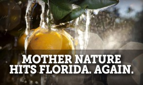 mother nature hits Florida. Again.